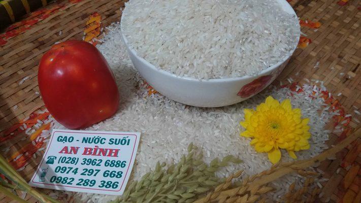 giá gạo tấm hôm nay